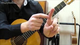 Учимся играть баррэ на гитаре