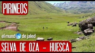 PIRINEOS | SELVA DE OZA - AGUAS TUERTAS