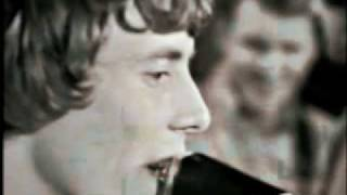 The Nashville Teens - Find My Way Back Home.flv