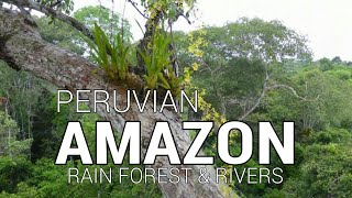 Amazon river, Napo river, and rainforest via Iquitos, Peru