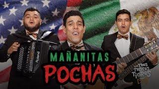 Mañanitas POCHAS - Los Tres Tristes Tigres
