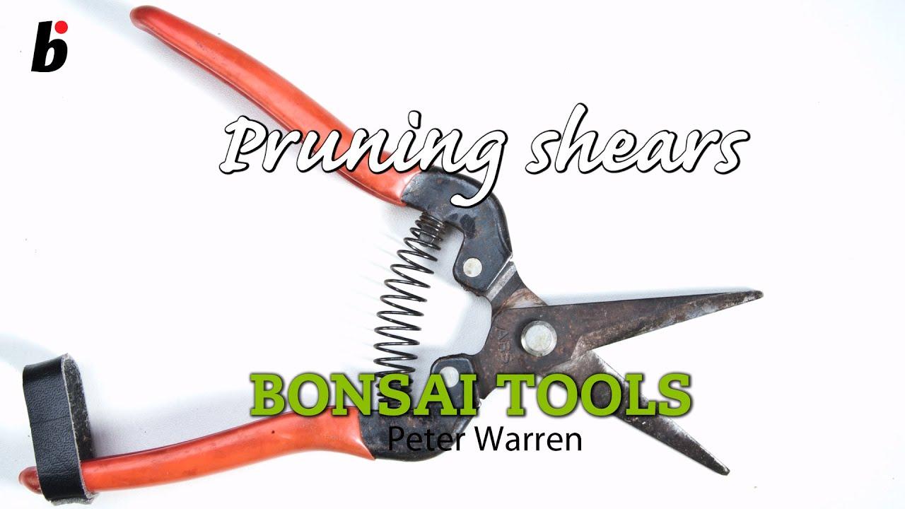 Bonsai Pruning Shears Youtube