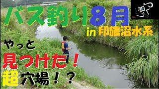 バス釣り 印旛沼水系