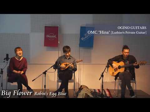 "Blue Guitars - 171009 Robin's Egg Blue & Kzo Ishibashi - OGINO GUITARS / OMC ""Hina"""