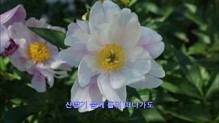 두메산골 - 배호: 강당마을 2017년 5월 27일