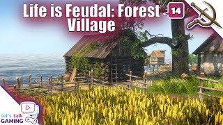 Forest Village Guide - YT
