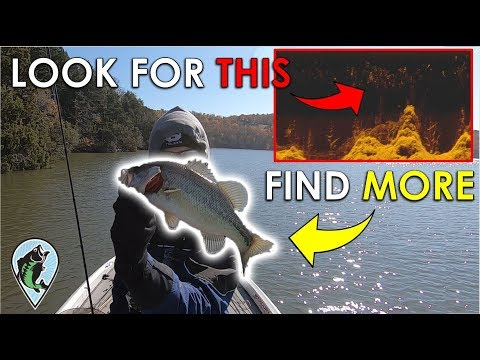 Fish Finder Trick To Find Bass Fast In The Winter | 3 Hour Challenge