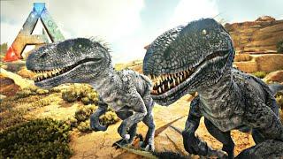 Download Video Casal de Indoraptor, Caça ao Alpha T-Rex! [Play as Dino] Dinossauros - Ark Survival Evolved MP3 3GP MP4