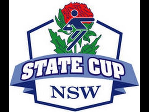 2014 NSW State Cup - UNSW v Papua New Guinea (Mixed Open)