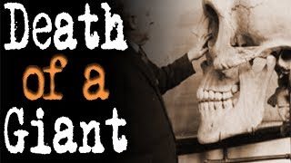 Death of a Giant | 3 Terrifying Paranormal Horror Stories