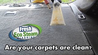 Steam Cleaning Carpets - Fresh Eco Steam Cleaning