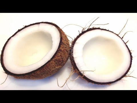 Top 10 Coconut Producing Countries In The World