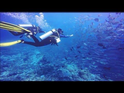 Palau 2017 - diving