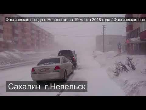 Сахалин. Невельск. Фактическая погода на 19.03.2018 в 19:00.