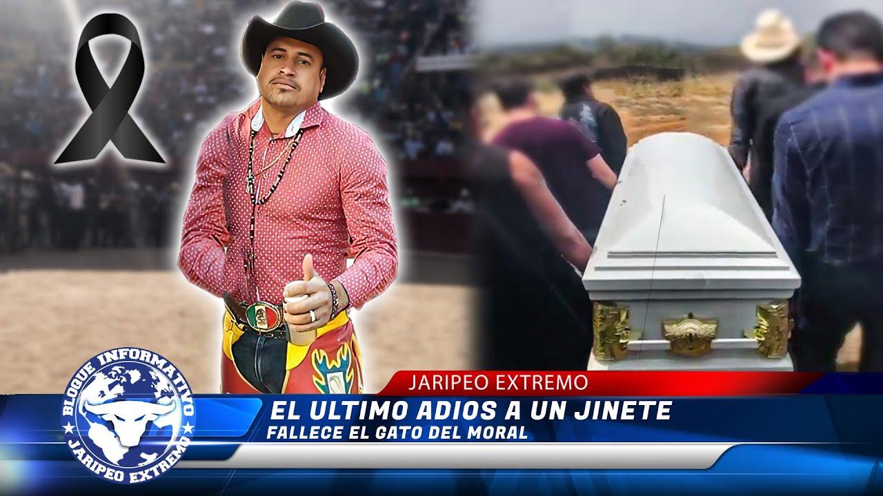 Download EL ULTIMO ADIOS A UN JINETE