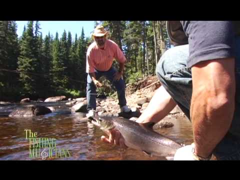 Newfoundland salmon fishing with Mayflower outfitters - Great Northern Peninsula