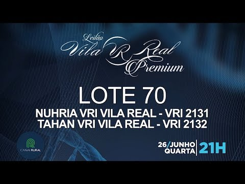 LOTE 70 (VRI 2131/VRI 2132)