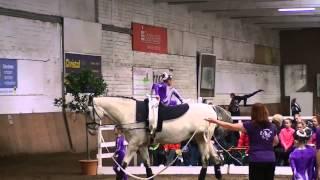 Pegasus 3 - E-Schritt - Hohenhameln 2015