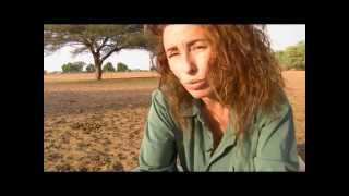 Sophie Yana - Andrieu Fondatrice de Women In Action présente The Great Green Wall