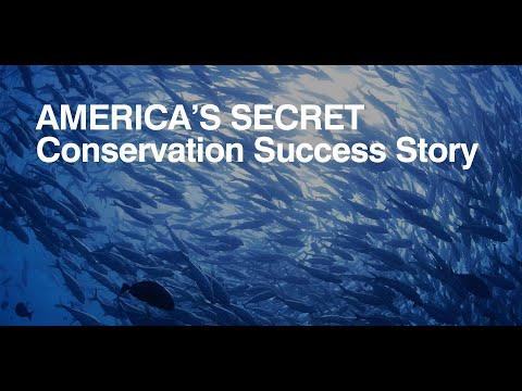 America's secret conservation success story