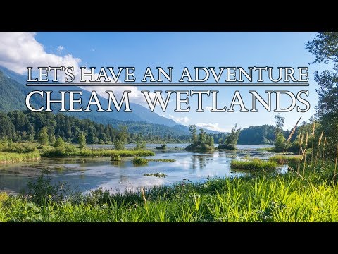 CHEAM LAKE WETLANDS - Regional Park