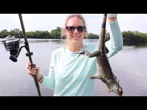 Blowgun Hunting Invasive IGUANAS In Florida!