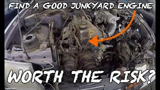 What To Look For When Buying A Junkyard Engine!