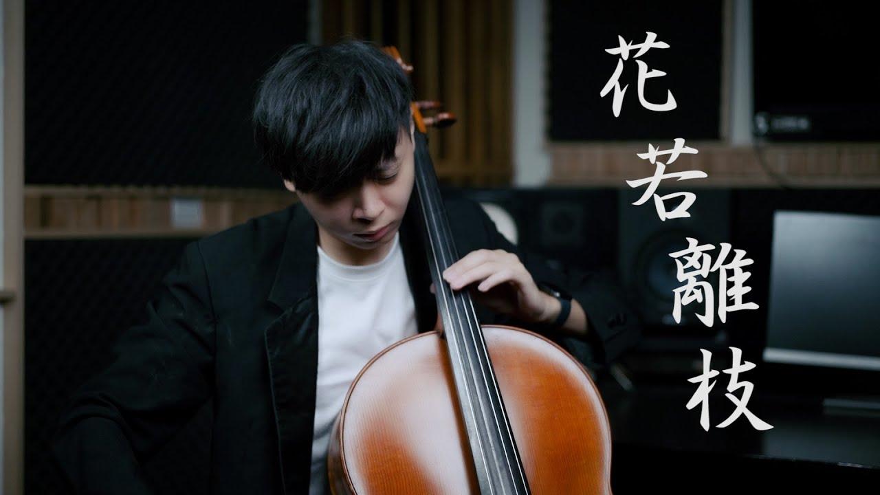 Download 《花若離枝》蘇芮 Cello cover 大提琴版本 『cover by YoYo Cello』【台語懷舊系列】