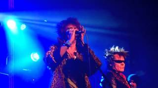 The Rezillos Live: I Cant Stand My Baby