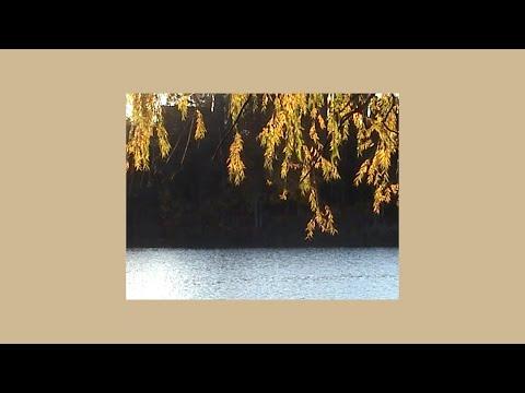 taylor swift type instrumental – sway