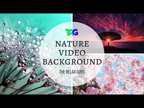Nature Video Background HD with 3 Gymnopédies and William Tell Overture | Nature HD Videos 1080p ♮63