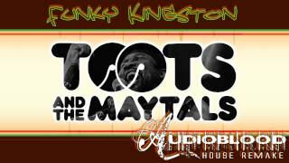 Toots & The Maytals - Funky Kingston (Patrick Oaken House Remake)