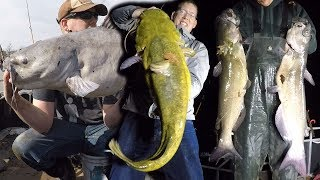 Ultimate FISHING CHALLENGE - 300 lb catfish challenge - How to catch BIG catfish