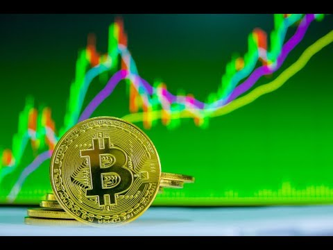 """Bitcoin Is """"Mature"""" (Next Bull Run), IOTA Smart Contracts And Stable Coin Chaos Cryptocurrency Videos on VIRAL CHOP VIDEOS"""