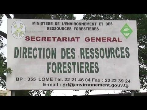Togo, Moratoire sur l'exploitation du bois