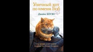 Книжный обзор/ СПАСИБО ВСЕМ ЗА КОММЕНТЫ И ЛАЙКИ! Прочитано. Уличный кот по имени Боб