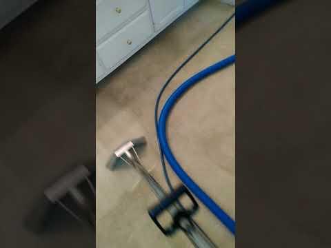 Carpet Cleaning in Decatur, Ga - nasty nylon carpet part 2