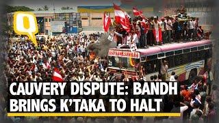 The Quint: Cauvery Water Dispute: Bandh Brings Karnataka to a Halt