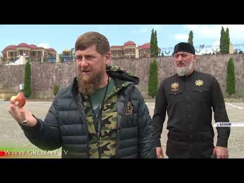 Рамзан Кадыров посетил ярмарку местных производителей