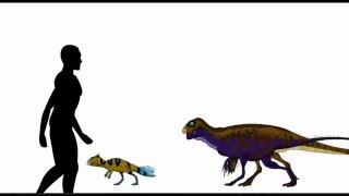 A Thousand Dinosaurs