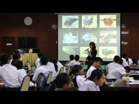 เล็กๆเปลี่ยนโลก [by Mahidol] เปิดโลกทัศน์วิทยาศาสตร์และนวัตกรรม (2/3) ตามล่าหาสปีชีส์ ปลากัด