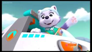 Paw patrol skye and everest song video