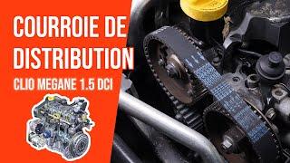 Changer la Courroie de Distribution et la Pompe à eau Megane 2 1.5 dCi 🚗