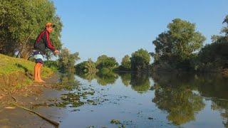 Рыбалка на закидушки в красивом месте дельты Волги Рыбалка на жмых Ловля сазана и карася