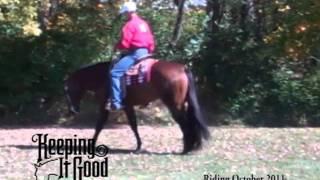 Repeat youtube video Keeping It Good- AQHA Stallions