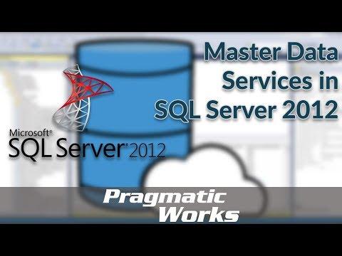 Master Data Services In SQL Server 2012
