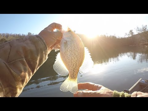 Crappie Fishing In Clear Water