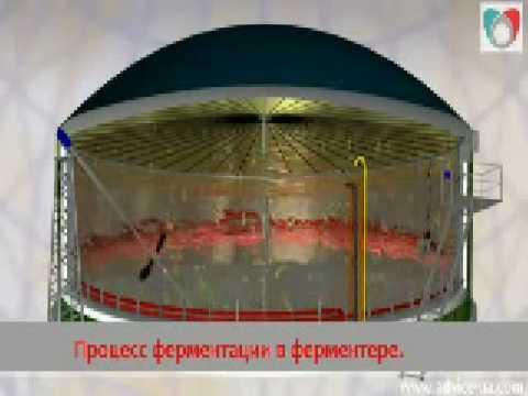 Biogas 3D