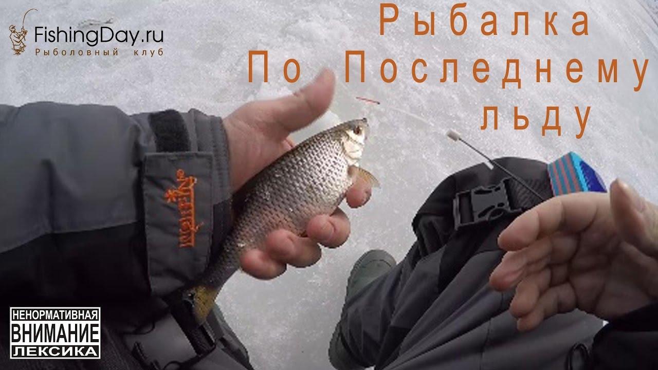 как клюет рыба в новолуние
