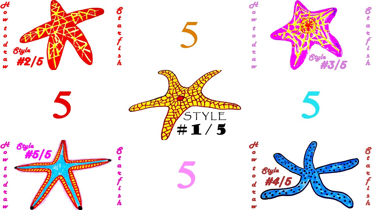 how to draw a starfish easy for kids and color 5 realistic